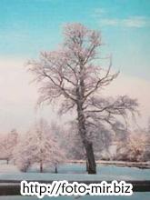 Учебник Джона Уэйна по фотографированию пейзажей, скачать бесплатно
